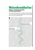 Die Publikation als PDF 2,5 MB - Bayerische Landesanstalt für ... - Page 3