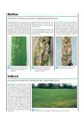 Die Publikation als PDF 2,5 MB - Bayerische Landesanstalt für ... - Page 7
