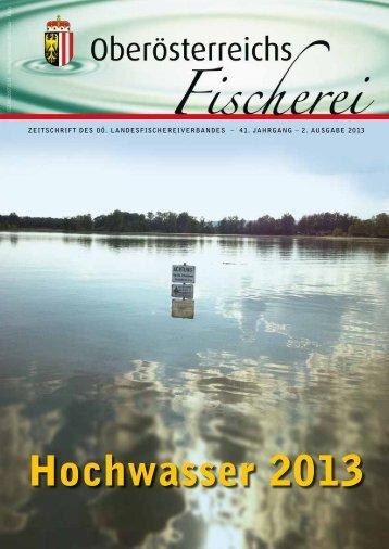 Ausgabe 2/2013 - Oberösterreichischer Landesfischereiverband