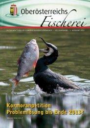 Ausgabe 1/2013 - Oberösterreichischer Landesfischereiverband