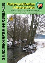 Aktuelles Heft 4 / 2013 - Landesfischereiverband Rheinland-Pfalz e.V.