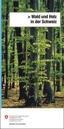 Wald und Holz in der Schweiz - Bafu - admin.ch