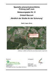 SAP zum Bebauungsplan - Stadt Lingen