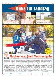 Ausgabe Landkreis Nordsachsen - Fraktion DIE LINKE im ...
