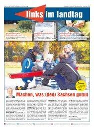 Ausgabe Landkreis Mittelsachsen - Fraktion DIE LINKE im ...