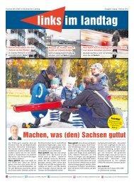 Ausgabe Leipzig Stadt - Fraktion DIE LINKE im Sächsischen Landtag