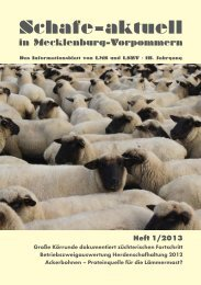 Download [Schafe-aktuell, Heft 1/2013/ 1299 kB] - LMS