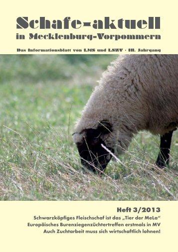 Schafe-aktuell, Heft 3/2013 (September)/ 1602 kB
