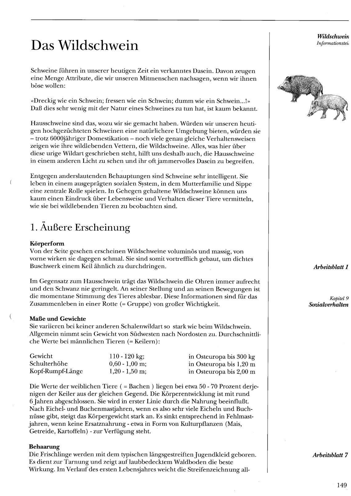 Fantastisch Domain Und Reichweite Arbeitsblatt 2 Fotos - Mathe ...
