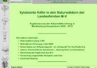 Vortrag - Mecklenburg-Vorpommern