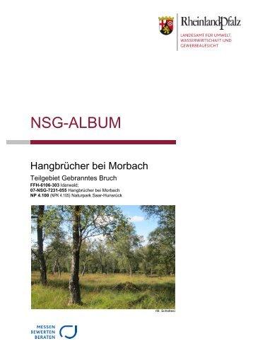 NSG-Album Gebranntes Bruch.pdf - LUWG