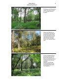 NSG-Album Gebranntes Bruch.pdf - LUWG - Page 5