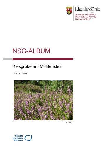 NSG-Album Mühlenstein_opt.pdf - LUWG
