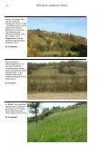 NSG-Album - Landesamt für Umwelt, Wasserwirtschaft und ... - Page 4