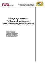 Darstellung des Versuchs und der Ergebnisse - Bayerische ...
