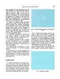 Exudaciones gomosas en alisos (Alnus glutinosa (L.) Gaertner ... - Page 5