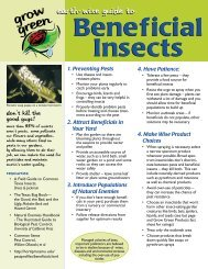 Earth-wise Guide to Beneficial Insects - Maine.gov
