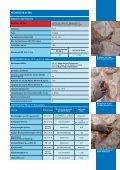 Mape-Antique Allettamento Mape-Antique Allettamento - Mapei - Page 3