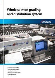 Whole salmon grading and distribution system - Marel