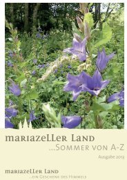 Sommer A-Z 2013 - Mariazell