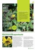 Neues und Bewährtes aus dem Haus- & Wildgarten - Maschinenring - Page 3