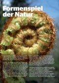 Neues und Bewährtes aus dem Haus- & Wildgarten - Maschinenring - Page 4