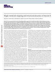 Sun et al. Nature Structural & Molecular Biology, 17(4)