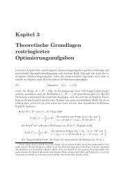 Theoretische Grundlagen restringierter Optimierungsaufgaben