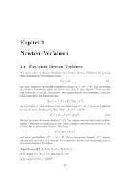 Kapitel 2 Newton–Verfahren