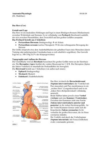 Anatomie-Herz - Matthias-in-berlin.de