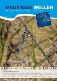 MAUENSEE WELLEN - Gemeinde Mauensee