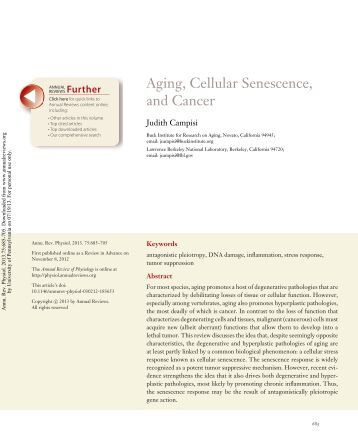 Aging, Cellular Senescence, and Cancer
