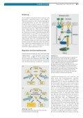 Hereditäre Hämochromatose: Fortschritte - Auswirkungen - Swiss ... - Seite 2