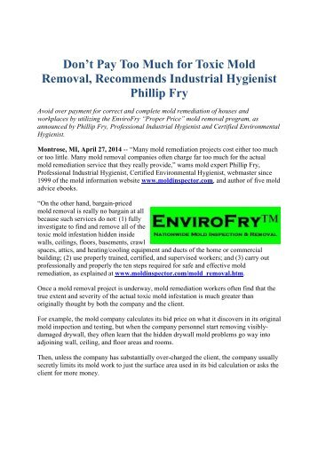 Clean Up Mold 10 Steps Recommended by Industrial Hygienist Phillip ...