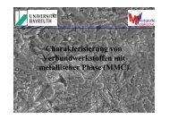 FS_MMC - Lehrstuhl Metallische Werkstoffe, Universität Bayreuth