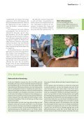 «Bockige» Lastenträger packen mit an - Mir z'lieb - Page 2