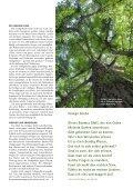 Zwei starke Asiaten - Mir z'lieb - Page 2