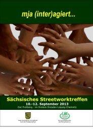 Dokumentation (pdf) - Landesarbeitskreis Mobile Jugendarbeit ...
