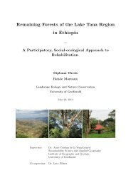 Remaining Forests of the Lake Tana Region in Ethiopia –