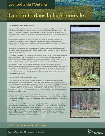 La récolte dans la forêt boréale (PDF, 366KO) - Ontario.ca
