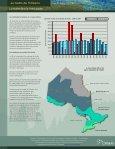 La récolte dans la forêt boréale (PDF, 366KO) - Ontario.ca - Page 2