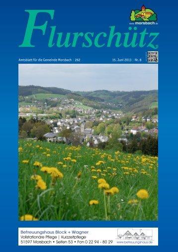 Ausgabe 262 vom 15.06.2013 - Gemeinde Morsbach