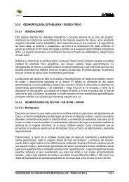 5.3.5 GEOMORFOLOGÍA, ESTABILIDAD Y RIESGO FÍSICO