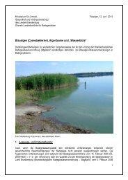 Handlungsempfehlungen - MUGV - Land Brandenburg