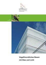 Vogelfreundliches Bauen mit Glas und Licht - MUGV
