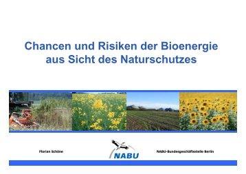 Chancen und Risiken der Bioenergie aus Sicht des Naturschutzes