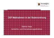 CEF-Maßnahmen in der Bodenordnung