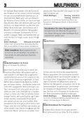 download - Gemeinde Mulfingen - Page 3