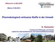 Prof. Dr. Gerd Hamscher