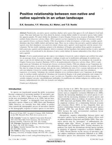 Positive relationship between non-native and native squirrels in an ...